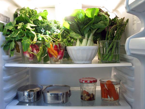 Kết quả hình ảnh cho kiểm tra tủ lạnh