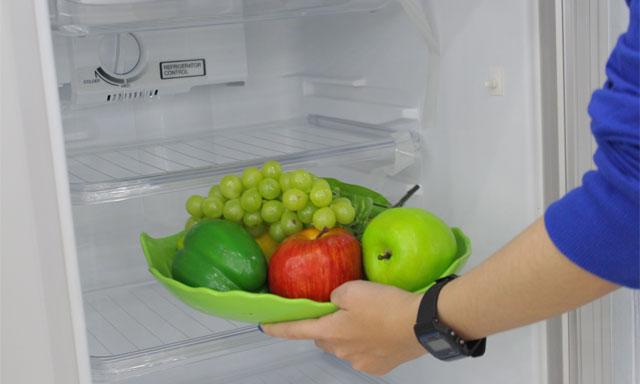 Một số lưu ý khi mới mua tủ lạnh