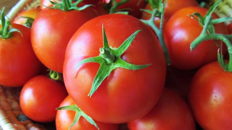 Không nên bảo quản cà chua trong tủ lạnh