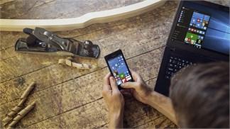 Thị trường: Windows Phone thảm bại, nhưng Microsoft thì không