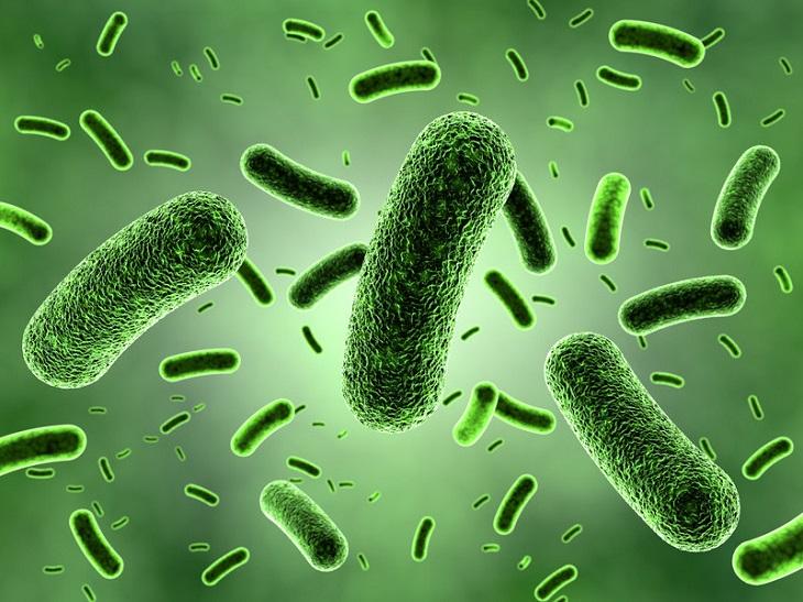 . Chính việc này dẫn đến sự phát triển của nấm mốc, vi khuẩn và gây ra mùi hôi