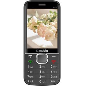 Q-mobile Q320