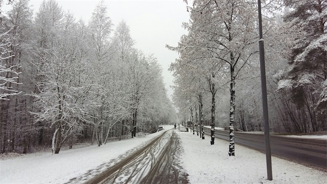 Ảnh chụp một con đường nhiều tuyết rơi (Ảnh: Hanh Chu)