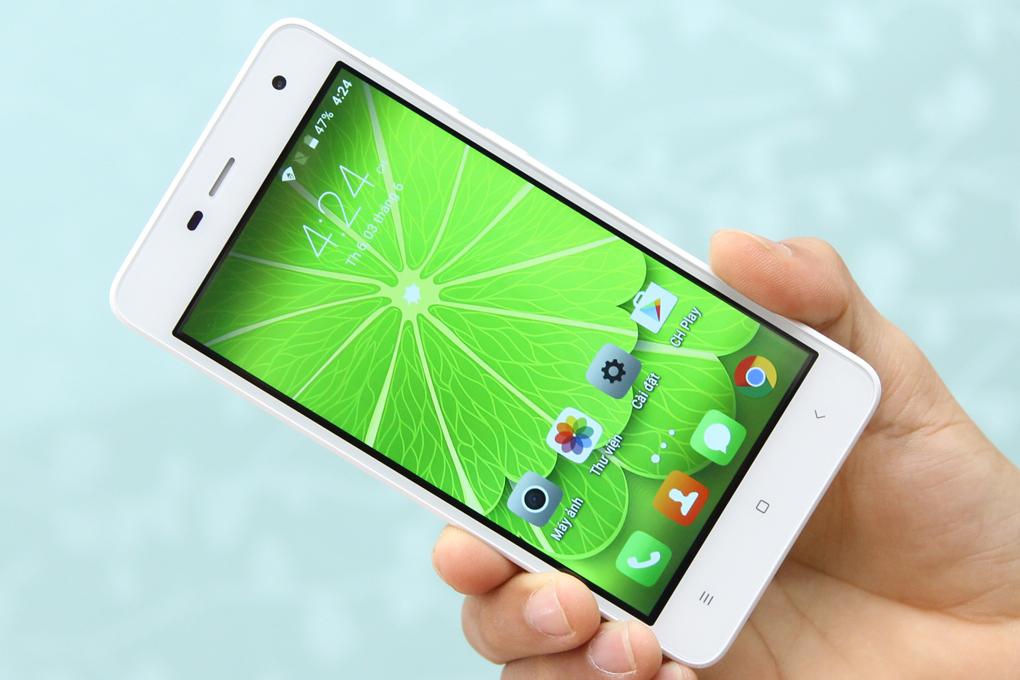 Màn hình của Q Vita rộng 5 inch, với công nghệ IPS LCD cho màu sắc hiển thị luôn tươi mới ở mọi góc nhìn.