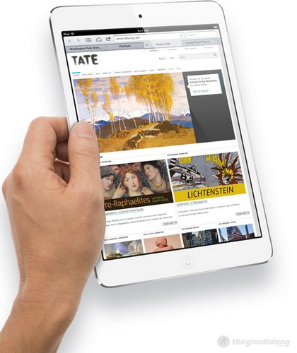 Lướt Web cực nhanh với mạng 4G trên ipad mini
