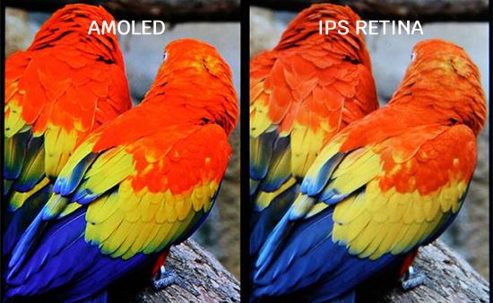 So sánh giữa màn hình AMOLED và màn hình Retina IPS.